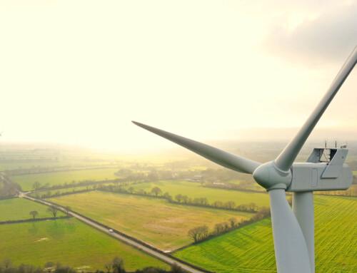 Meet & Greet: Wind Vanes